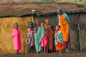 Woman and children standing in front of mud hut. Mara National Reserve, Kenya. 2007.  -  Jeff Foott
