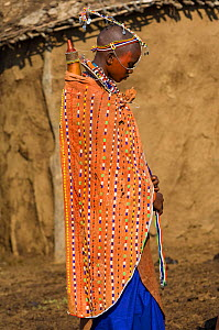 Maasai bride dressed for wedding ceremony. Maasai Mara National Reserve, Kenya. 2007.  -  Jeff Foott