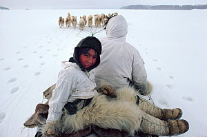 Inuit hunter, Iisaanguaq and son, Qajoranguaq out seal hunting in the Spring near Narsaarsuk in the Thule District of Northwest Greenland. 1980.  -  Bryan and Cherry Alexander