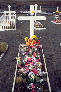 Grave of Inuit hunter, Ituko, with artificial flowers. Moriussaq, Northwest Greenland. Photographed after his death in 1990.  -  Bryan and Cherry Alexander