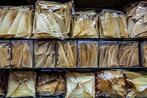 Shark fins for sale in a traditional medicine store in Hong Kong. November 2016.  -  Aaron Gekoski