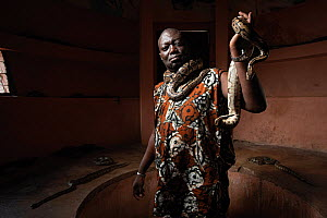 Man displaying a Royal / Ball python (Python regius) at the Temple of the Pythons in Ouidah, Benin, West Africa. Built by former ruler King Kpasse to honour snakes, the temple is now a tourist trap, w...  -  Aaron Gekoski / World Animal Protection