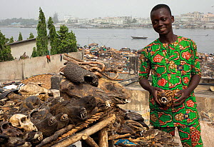 Voodoo market in Benin, West Africa. Heads of baboons and hornbills visible. The vendor is holding the head of a dog painted to resemble a leopard. January 2020. Mandatory credit: Aaron Gekoski /...  -  Aaron Gekoski / World Animal Protection