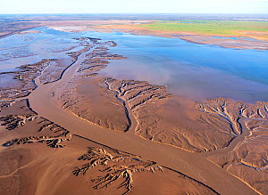 Aerial view of patterns in tidal mudflats of Colorado River Delta where there is tidal encroachment from the Gulf of California. Baja California, Mexico, 2019.  -  Jack Dykinga