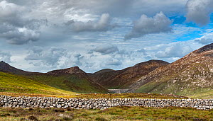 Drystone wall with dam wall of Silent Valley Reservoir in background, surrounded by mountains of Slieve Bearnagh, Ben Crom, Slieve Binnian, Slieve Lamagan and Slieve Commedagh. Mourne Mountains, Count...  -  Robert  Thompson