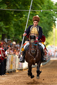 Man on horseback participating in Alka tournament, spectators in background. Held on the first Sunday in August since 1715 the Alka commemorates the victory of Christians over Ottoman Turks. Inscribed...  -  Kristel Richard