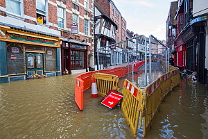 Shops in town centre flooded by River Severn. After Storm Ciara and Storm Dennis, the wettest February recorded in the UK. Shrewsbury, Shropshire, England, UK. February 2020.  -  Ashley Cooper