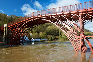 Ironbridge, the world's first cast iron bridge. River Severn in flood conditions following Storm Ciara and Storm Dennis, the wettest February recorded in the UK. Shropshire, England, UK. February...  -  Ashley Cooper