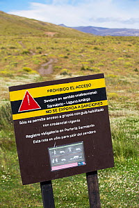 Puma (Puma concolor) warning sign on footpath in Torres del Paine National Park, Patagonia, Chile. January 2020.  -  Ashley Cooper