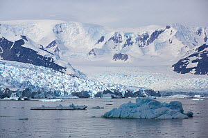 Snow covered mountains and glacier, icebergs in foreground. View from Detaille Island, Graham Land, Antarctica. January 2020.  -  Ashley Cooper