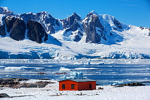 Gentoo penguin (Pygoscelis papua) colony on rocks around hut on Petermann Island, tourists from expedition cruise ship sea kayaking in Southern Ocean. Mountains of Graham Land in background. Antarctic...  -  Ashley Cooper