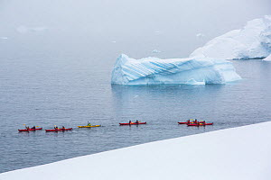 Tourists from an expedition cruise ship sea kayaking between icebergs and Portal Point. Reclus Peninsula, Antarctica. December 2019.  -  Ashley Cooper