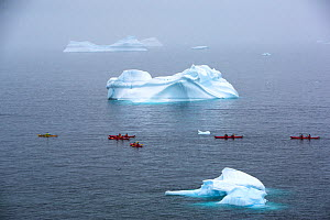 Tourists from an expedition cruise ship sea kayaking past icebergs. Portal Point, Reclus Peninsula, Antarctica. December 2019.  -  Ashley Cooper
