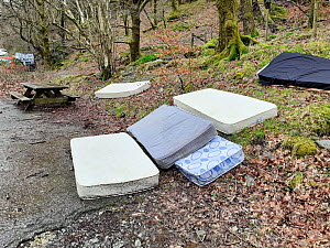 Mattreses fly tipped and illegally dumped in car park at edge of woodland. White Moss, near Ambleside, Lake District National Park, England, UK. February 2020.  -  Ashley Cooper