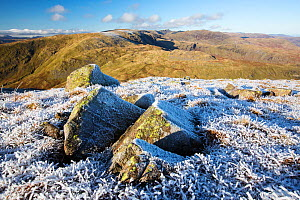 Rocks and grass covered with hoar frost on Red Screes, view towards Helvellyn. Lake District National Park, England, UK. November 2019.  -  Ashley Cooper