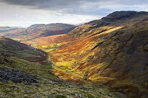 Moorland view through Duddon Valley towards Cockley Beck, Wrynose Pass alongside meandering river. Lake District National Park, Cumbria, England, UK. November 2019.  -  Ashley Cooper