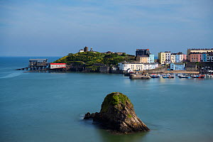 Fishing town of Tenby with RNLI lifeboat stations, old and new, on headland. Gosker Rock in foreground, composed of dipping beds of carboniferous sandstones. Pembrokeshire Coast National Park, Wales,...  -  Graham Eaton