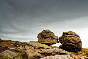 Wain Stones known as The Kiss, millstone grit boulders from the Carboniferous, eroded and sculpted. Bleaklow, near Glossop, Peak District National Park, England, UK. June 2020.  -  Graham Eaton