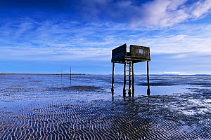 Tide shelter on the Pilgrims Trail, a line of posts marks the safe trail to Lindisfarne over the soft sands. Northumberland, England, UK. December 2018.  -  Graham Eaton