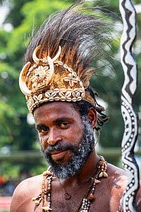 Papuan man in traditional headdress, portrait. At Sing-sing gathering where traditional cultures including dance and music are shared. Morobe Show, Lae, Papua New Guinea. 2019.  -  Konrad Wothe