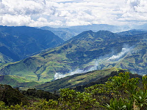 Fires burning amongst rainforest fragments in mountains. Eastern Highlands, Papua New Guinea. 2019.  -  Konrad Wothe