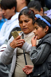 Children visiting Monarch butterfly reserve. Teacher and child looking at images of butterflies on mobile phone, Sierra Chincua Sanctuary, Mexico.  -  Patricio Robles Gil