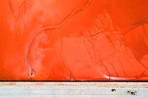 Bulldozers on red mud dam, shoring up the dam to prevent dangerous leaks.  These Red mud deposits in storage pond are a highly alkaline waste product produced by the industrial production of aluminium...  -  Milan Radisics