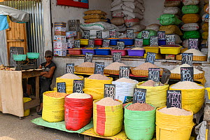 Cereals and rice for sale, unpackaged. Mandroseza, Antananarivo, Madagascar. 2019.  -  Terry Whittaker