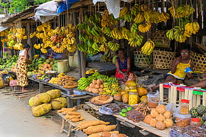Fruit and vegetable market stall, women selling produce such as bananas, yams and jackfruit. Central Madagascar. 2019.  -  Terry Whittaker