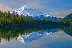 Mt Hood and reflection, from Lost Lake in the Mt. Hood National Forest, Oregon, USA. May.  -  John Shaw