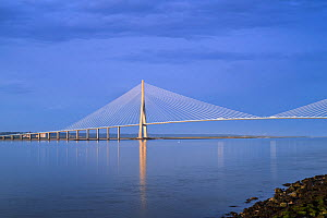Pont de Normandie / Bridge of Normandy, cable-stayed road bridge over the river Seine linking Le Havre to Honfleur, Normandy, France. August 2020  -  Philippe Clement