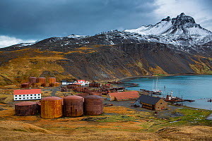 Vats and buildings of abandoned whaling station with mountains above. Grytviken was the largest whaling station on South Georgia. October 2017.  -  Mark MacEwen