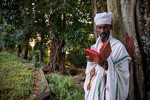 Priest praying in church forest of Gindatemen Michail Orthodox Church, portrait. Church forests remain largely intact within a degraded landscape as they are considered sacred. Near Bahir Dar, Ethiopi...  -  Bruno D'Amicis