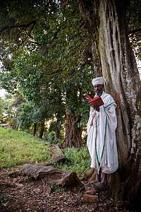 Priest praying in church forest of Gindatemen Michail Orthodox Church. Church forests remain largely intact within a degraded landscape as they are considered sacred. Near Bahir Dar, Ethiopia. 2018.  -  Bruno D'Amicis