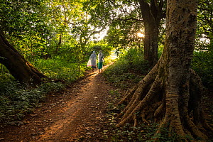 People attending Sunday service at Wonchet Michail Orthodox Church walking through church forest. Church forests remain largely intact in a degraded landscape as they are considered sacred. Near Hamus...  -  Bruno D'Amicis