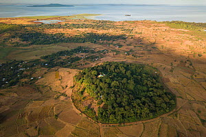 Aerial view of habitat fragmentation with degraded land surrounding church forest of Gindatemen Michail Church, at dawn. Forest cover in Ethiopia has fallen from 40% to 4.2% in 50 years. Church forest...  -  Bruno D'Amicis