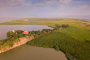 Aerial view of monastery surrounded by church forest on shore of Lake Tana, with river estuary beyond. Church forests remain largely intact in a degraded landscape as they are considered sacred. Near...  -  Bruno D'Amicis