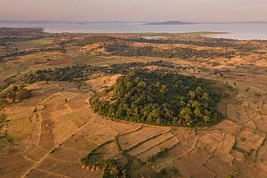 Aerial view of habitat fragmentation with degraded land surrounding church forest of Gindatemen Michail Orthodox Church, Lake Tana in distance. Forest cover in Ethiopia has fallen from 40% to 4.2% in...  -  Bruno D'Amicis