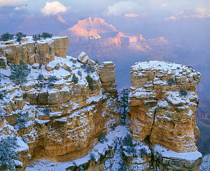 Moran Point with snow on the pinnacles, Grand Canyon National Park, Arizona, USA.  -  Jack Dykinga