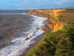 Coastal footpath and cliffs with Atherfield Point and The Needles beyond, Whale Chine, Isle of Wight, England, UK, January.  -  Mike Read