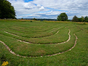 Miz-maze on St Catherine's Hill Nature Reserve, Winchester, England, UK, July.  -  Mike Read
