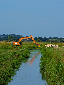 Digger clearning a rhyne by removing water vegetation, West Sedgemoor RSPB Reserve, Somerset Levels and Moors, Somerset, England, UK, July.  -  Mike Read