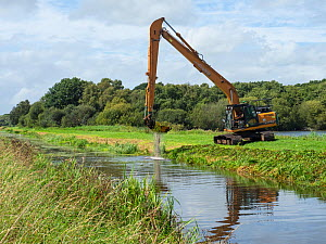 Machinery clearing vegetation out of South Drain, Shapwick Heath National Nature Reserve, Avalon Marshes, Somerset Levels and Moors, England, UK, August.  -  Mike Read
