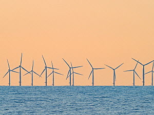 Wind turbines off the coast of Sheringham North Norfolk, England, UK, July.  -  David Tipling
