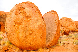 Granitic boulder split in two, weathering caused by extreme desert temperatures. Karlu Karlu / Devils Marbles Conservation Reserve, Northern Territory, Australia.  -  Enrique Lopez-Tapia
