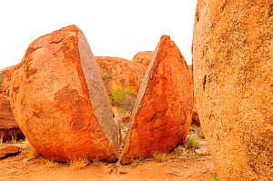 Egg-shaped granitic boulder split in two, weathering caused by extreme desert temperatures. Karlu Karlu / Devils Marbles Conservation Reserve, Northern Territory, Australia.  -  Enrique Lopez-Tapia
