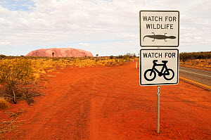 Road signs warning drivers to watch out for wildlife and cyclists, Uluru / Ayers Rock in distance. Uluru-Kata Tjuta National Park, Northern Territory, Australia. 2008.  -  Enrique Lopez-Tapia
