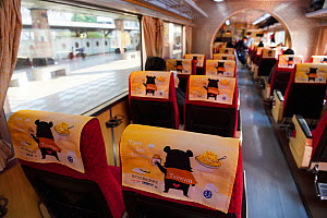Taiwan Black bear on headcovers in Taiwan's trains, and the mascot for the rail carrier. Taiwan.  -  Staffan Widstrand / Wild Wonders of China