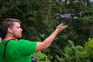 Photographer Fabian Muhlberger flying a drone in temperate forest, Yushan National Park, Taiwan  -  Staffan Widstrand / Wild Wonders of China