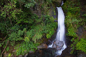 Waterfall along the Walami trail, in the Cloud forest, Yushan National Park, Taiwan  -  Staffan Widstrand / Wild Wonders of China